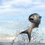 bluefish teeth