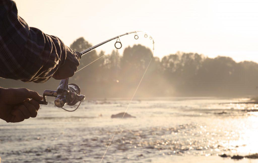 fishing angler - bass anglers