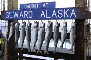 Alaskan Fishing Vacation Seward - best fishing spots in the USA