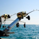 fishing poles - fishing rods