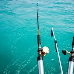 rods for fishing poles