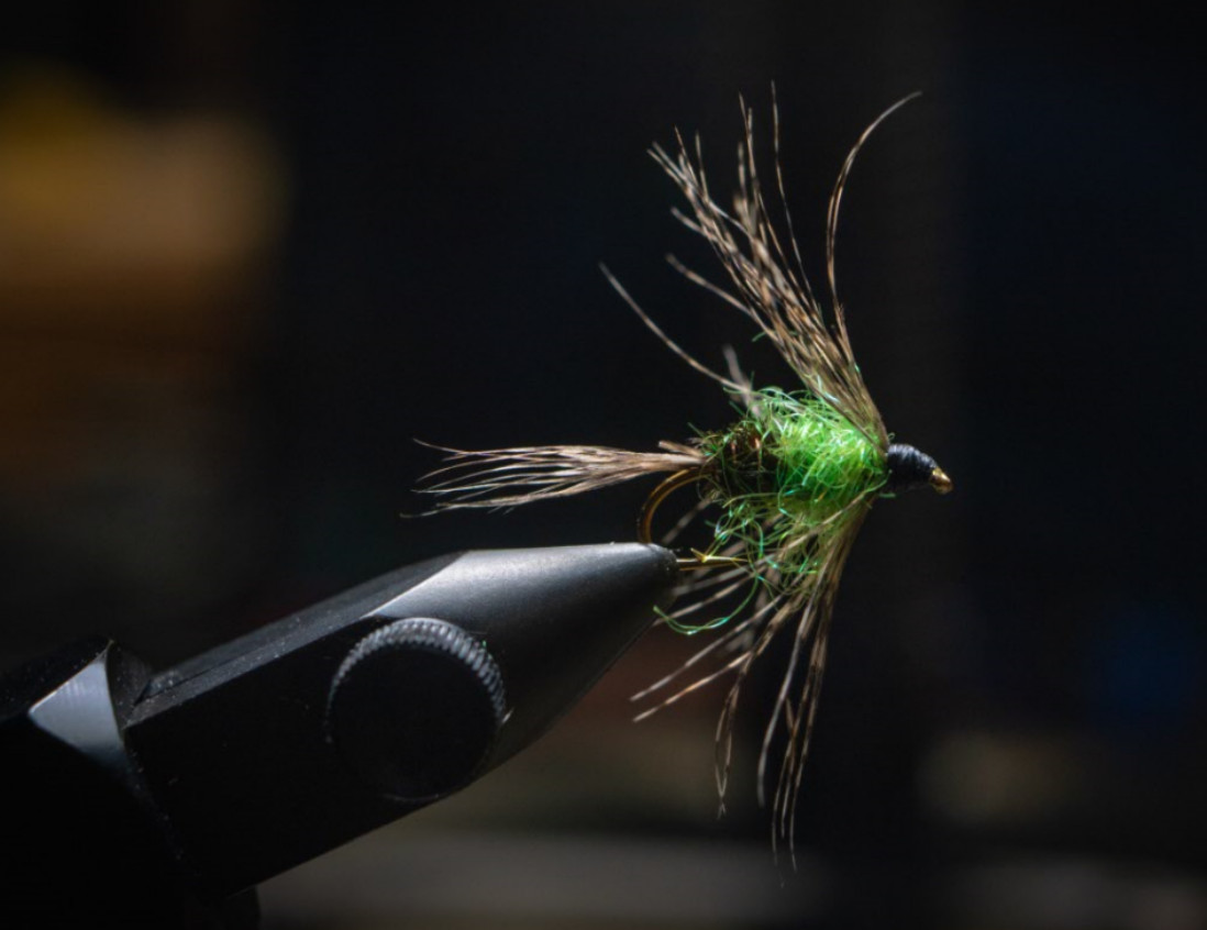 soft hackle wet fly