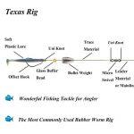 texas rig fishing