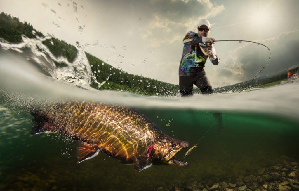 trout fishing tips - fishing trout lake